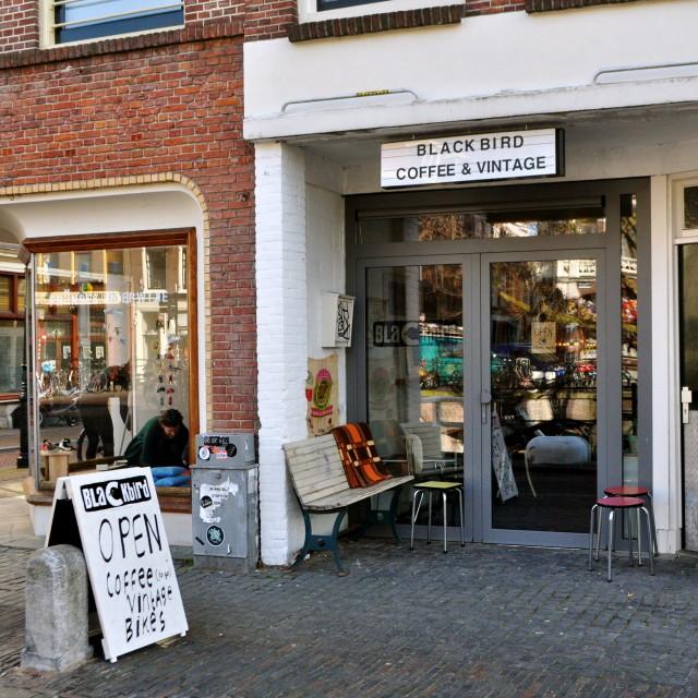 Blackbird Coffee Explore Utrecht 7