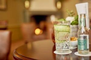 karel-5-bar-lounge-gin-tonic