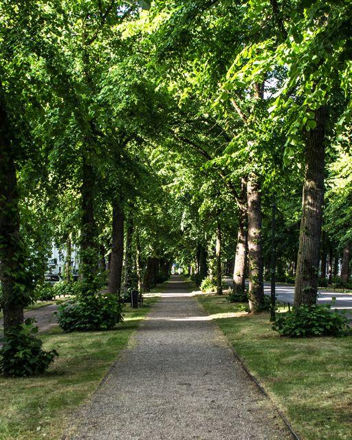 explore Utrecht Tour 2 cycle-path-1