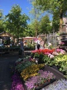 Explore Utrecht Bloemenmarkt 1
