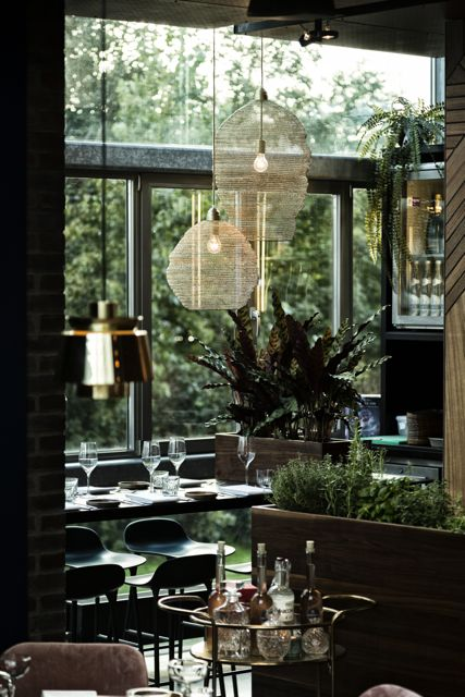 Restaurant Fico Explore Utrecht 12