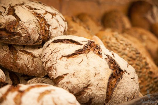 Brood van de veldkeuken Explore Utrecht 2