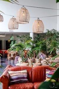 Cafe Karibu Explore Utrecht 11