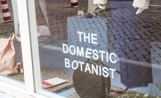 The Domestic Botanist Explore Utrecht 8