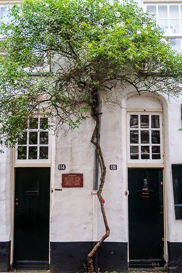 Stadswandeling Godskameren Explore Utrecht-9